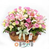 [당일배송]핑크요정♡ 장미 꽃바구니 꽃다발 생일 기념일 꽃선물_꽃배달당일배송_명품 전국꽃배달_[플라워몰]