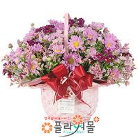 [당일배송]사랑이란♡ 장미 꽃바구니 꽃다발 생일 기념일 꽃선물_꽃배달당일배송_명품 전국꽃배달_[플라워몰]