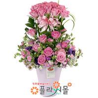 [당일배송]우리 사랑하자(50송이)♡ 핑크 50송이 장미 꽃바구니 꽃다발 생일 기념일 꽃선물_꽃배달당일배송_명품 전국꽃배달_[플라워몰]