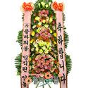 [당일배송]축하의날♪축하3단_ 개업화환 결혼식화환 당일배송_화환배달전문[플라워몰]