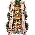 축하3단(a-1)