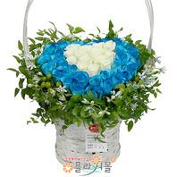 [당일배송][50송이]순백의 사랑(50송이장미)♡ 대형꽃바구니 생일 기념일 꽃선물_꽃배달당일배송_명품 전국꽃배달_[플라워몰]