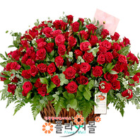 [당일배송][100송이]사랑 한아름(백송이장미)♡ 대형꽃바구니 생일 기념일 꽃선물_꽃배달당일배송_명품 전국꽃배달_[플라워몰]