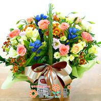 [당일배송]별밤♡ 장미 꽃바구니 꽃다발 생일 기념일 꽃선물_꽃배달당일배송_명품 전국꽃배달_[플라워몰]