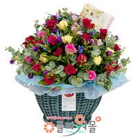 [당일배송]사랑 한바구니♡ 장미 꽃바구니 꽃다발 생일 기념일 꽃선물_전국 당일꽃배달서비스_명품꽃배달[플라워몰]