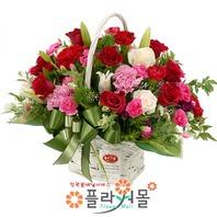 [카네이션]건강하세요♡ 어버이날 카네이션꽃바구니 카네이션꽃배달 어버이날꽃바구니 카네이션 당일배송 꽃배달_ 전국꽃배달[플라워몰]